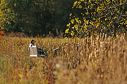Man On Bench At Great Meadows