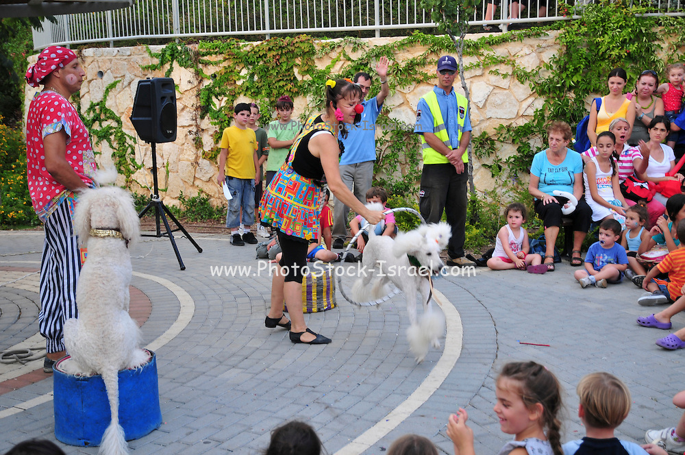 Israel, Haifa, Outdoor, Summer entertainment for children. Clowns perform with dogs for children