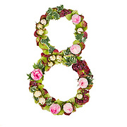 The number Eight Part of a set of letters, Numbers and symbols of the Alphabet made with flowers, branches and leaves on white background