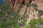 View of the West Rim Trail and Zion Canyon, in Zion National Park, Utah.