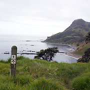 A view from the Coromandel Coastal Walkway with Discovery Tours. The walk from Fletcher Bay takes a comfortable 3 to 4 hour traversing farmland, coastline and pristine native bush and finishing in Stony Bay.  Coromandel, New Zealand. 30th November 2010. Photo Tim Clayton..