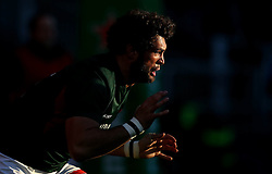 Dom Barrow of Leicester Tigers warms up - Mandatory by-line: Robbie Stephenson/JMP - 23/10/2016 - RUGBY - Welford Road Stadium - Leicester, England - Leicester Tigers v Racing 92 - European Champions Cup