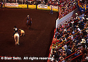 Pennsylvania Farm Show, Harrisburg, PA,  cowhand lasso, Arena