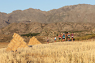 The leading contenders run through a harvested field of lucerne during Stage 3 of the 2017 Tankwa Trail on the 19th of February. Photo by Oakpics / Dryland Event Management / Sportzpics {dem16gst}