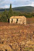 Chateau Villerambert-Julien near Caunes-Minervois. Minervois. Languedoc. A tool shed hut in the vineyard. France. Europe. Vineyard.