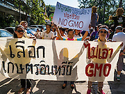 09 DECEMBER 2015 - BANGKOK, THAILAND: People rally in Bangkok against GMO crops. About 50 environmental activists met near Government House in Bangkok to protest against the Biological Safety Bill being debated in the Thai legislature. The bill will allow use of genetically modified organisms (GMOs) for commercial purposes. Political gatherings of more than five people are prohibited by the military government and the protestors were not allowed to march to Government House or directly confront legislators.     PHOTO BY JACK KURTZ