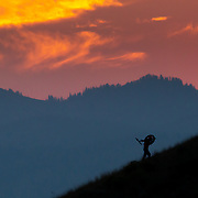 Andrew Whiteford hikes up a ridgeline at sunset in the Tetons.