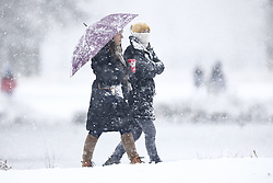 © Licensed to London News Pictures. 24/01/2021. London, UK.   Heavy snow falls in Bushy Park, south west London. A band of snow is crossing the south east this morning as temperature remain just above freezing. Photo credit: Peter Macdiarmid/LNP
