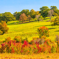 Central Massachusetts Fall Foliage fine art photography of early fall colors at the bottom of Gibbet Hill in Groton, Massachusetts.<br /> <br /> Gibbet Hill in Groton Central Massachusetts Fall Foliage photography images are available as museum quality photography prints, canvas prints, acrylic prints, wood prints or metal prints. Fine art prints may be framed and matted to the individual liking and interior design decorating needs.<br /> <br /> Good light and happy photo making!<br /> <br /> My best,<br /> <br /> Juergen