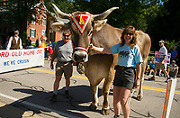 """Ron and Kathy Salanitro with """"Jake"""" showing off his best side to the judges during the Gilford Old Home Day parade through the Village on Saturday morning.  (Karen Bobotas/for the Laconia Daily Sun)"""
