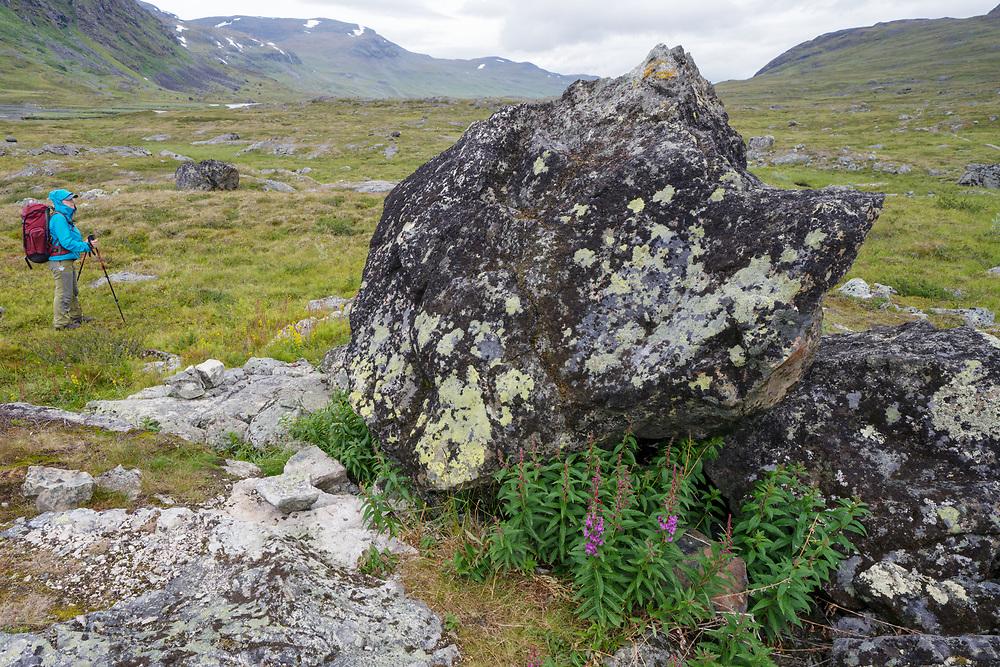 Hiking Kungsleden, Abisko national park, Lapland, Norrbotten, Sweden