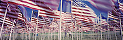 Field of 1,000 USA flags on Memorial Day in Questa, NM.