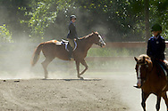 Middletown, New York - Riders and their horses kick up dust as they compete in the 70th annual Middletown Rotary Horse Show in the Rotary Ring at Fancher-Davidge Park on Sept. 8, 2013.