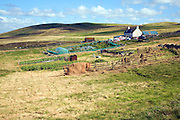 Croft house garden, Sandness, Mainland, Shetland Islands, Scotland