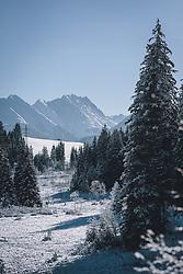 THEMENBILD - das Naturdenkmal Wasenmoos lädt auch im Winter zu ausgedehnten Wanderungen in den Kitzbüheler Alpen ein, aufgenommen am 21. November 2020 in Mittersill, Oesterreich // the natural monument Wasenmoos invites you also in winter to extensive hikes in the Kitzbüheler Alps, in Mittersill, Austria on 2020/11/21. EXPA Pictures © 2020, PhotoCredit: EXPA/Stefanie Oberhauser