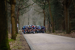 Christine Majerus leads the peloton through the trees at Drentse 8 van Westerveld 2018 - a 142 km road race on March 9, 2018, in Dwingeloo, Netherlands. (Photo by Sean Robinson/Velofocus.com)