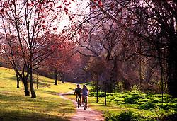 Cyclists at Buffalo Bayou Hike and Bike Trails