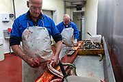 Ernest 'Ginger' Peacham (r) and Simon Brennan gutting and chopping eels on the last day at the historic Barneys Seafood in Aldgate before a move to Billingsgate Market. The famous wholesale jellied eel and shellfish business started in 1969 supplying Pie and Mash shops and shellfish stalls in East London. Jellied eels are a traditional London dish. London, United Kingdom.