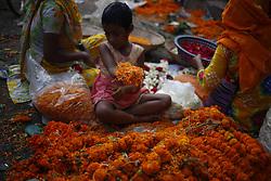 November 2, 2018 - Dhaka, Bangladesh - A child spreads mug flower petals to help mother as she sells petals in a flower market near Shahbag. (Credit Image: © MD Mehedi Hasan/ZUMA Wire)
