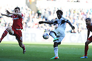 Swansea city's Wilfried Bony has a shot at goal. Barclays Premier league match, Swansea city v West Bromwich Albion at the Liberty Stadium in Swansea, South Wales on Saturday 15th March 2014. pic by Andrew Orchard,  Andrew Orchard sports photography.