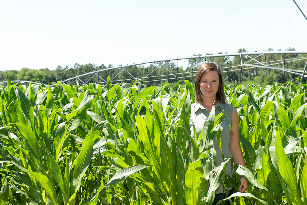 Casey Cox is the sixth generation of her family to farm along the Flint River in Camilla, Georgia, Mitchell county. The Longleaf Ridge Farms grows field corn (seen here), sweet corn, soybeans, peanuts and timber..
