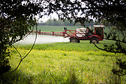 Crops being sprayed by a four wheeled crop sprayer in a field of agricultural land in Surrey, UK.