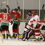 Bulgaria celebrate a goal from Viktor Chebishev  during the Turkey V Bukgaria match during the 2012 IIHF Ice Hockey World Championships Division 3 held at Dunedin Ice Stadium. Dunedin, Otago, New Zealand. 21st January 2012. Photo Tim Clayton