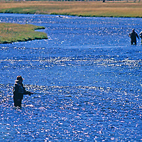 Firehole River, Yellowstone National Park, Wyoming. Fly fishermen on the Firehole River.