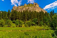 Spearfish Canyon, near Deadwood and Lead, Black Hills, South Dakota USA