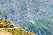 Bild von Mountainbiker in die Nähe von Grosse Scheidegg