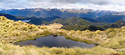 Panoramic view of the Mount Burns Tarns, Fiordland National Park, Southland, New Zealand