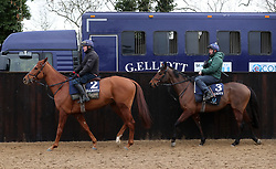 Samcro and Tiger Roll during the stable visit to Gordon Elliott's yard at Cullentra House, County Meath.