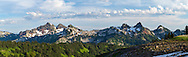 Panorama of the Tattoosh Range and Mazama Ridge from the Golden Gate Trail above Paradise in Mount Rainier National Park, Washington State, USA
