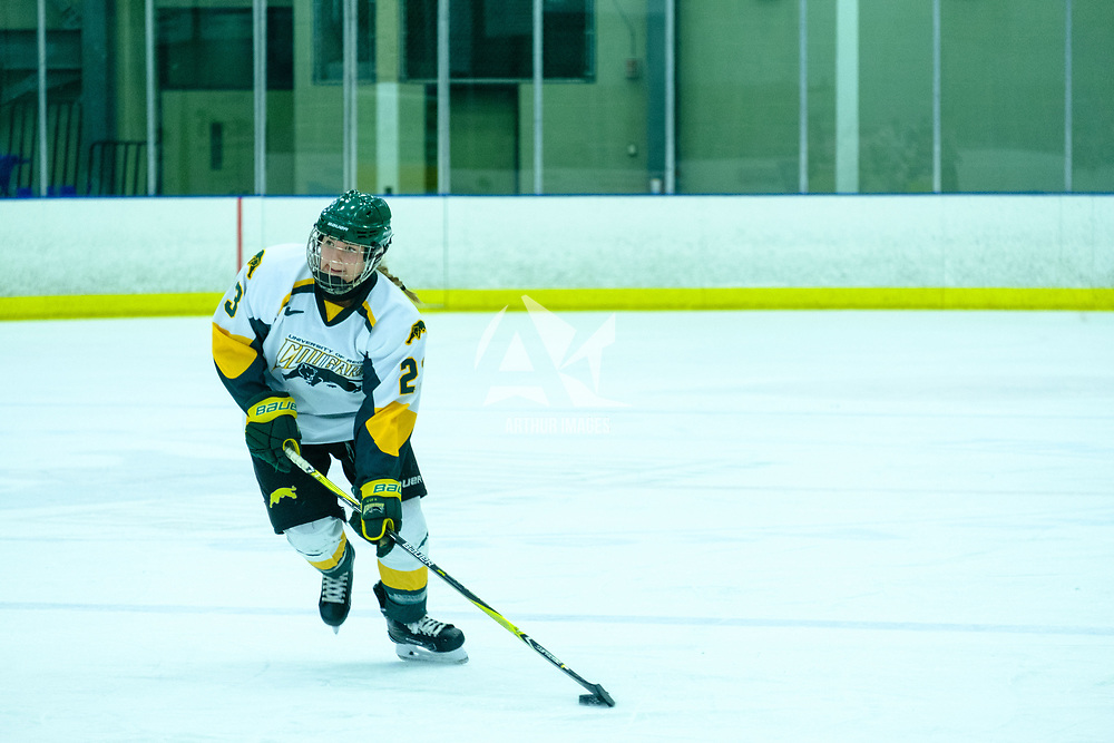 3rd year defence man Tamara McVannel (23) of the Regina Cougars in action during the Women's Hockey Home Game on October 21 at Co-operators Arena. Credit Matt Johnson/©Arthur Images 2017