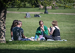 © Licensed to London News Pictures. 20/04/2020. London, UK. A group of people having lunch on Primrose Hill, north London during a pandemic outbreak of the Coronavirus COVID-19 disease. The public have been told they can only leave their homes when absolutely essential, in an attempt to fight the spread of coronavirus COVID-19 disease. Photo credit: Ben Cawthra/LNP. Photo credit: Ben Cawthra/LNP