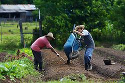 Agricultor prepara campo para a produção. FOTO: Jefferson Bernardes/Preview.com