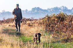 © Licensed to London News Pictures. 10/10/2018. London, UK. A man walking his dog at sunrise in Bushy Park, south London. Forecasters are expecting unusually warm temperatures for October. Photo credit: Rob Pinney/LNP