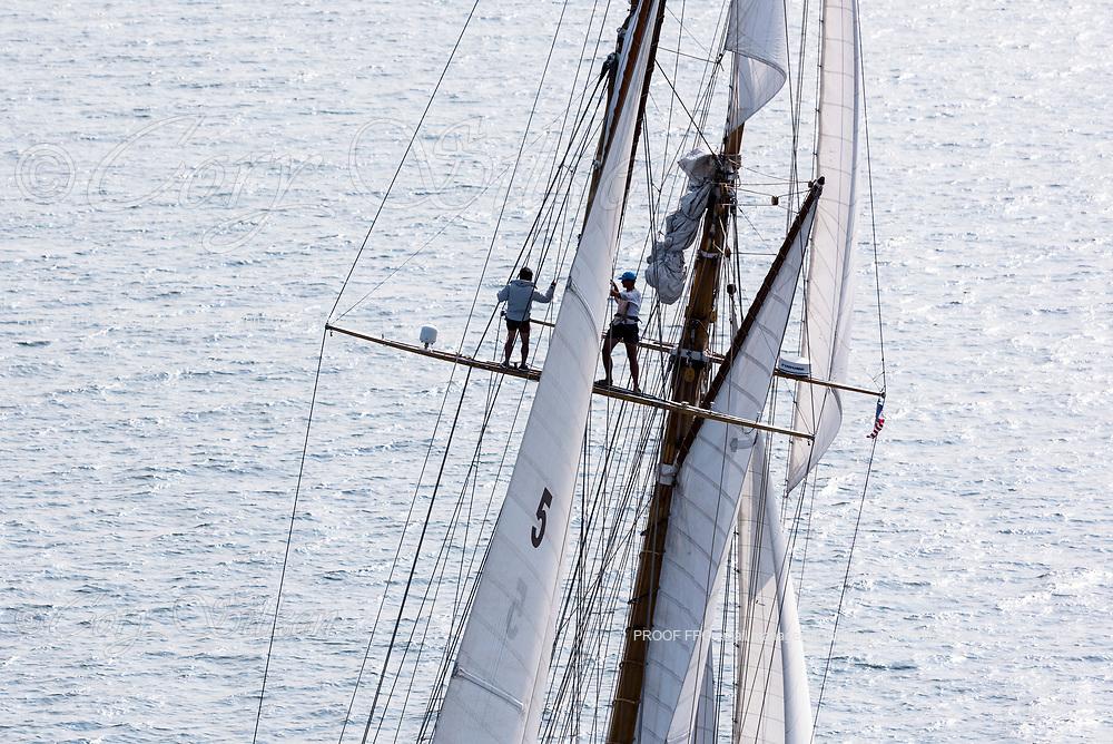Eleonora sailing in the Panerai Newport Classic Yacht Regatta, day one.