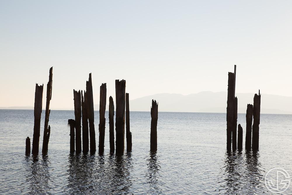 Locust Beach, Bellingham, Washington, Saturday, Novermber 15, 2014.