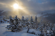 Early morning above Current Creek near Berthoud Pass