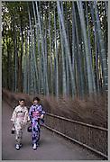 Japanese women in traditional kimono dress walking in Kyoto's bamboo garden, Japan