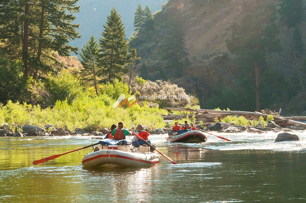 Scenic morning boating in The Impassible Canyon on the Middle Fork of the Salmon River during six day rafting vacation, Idaho.