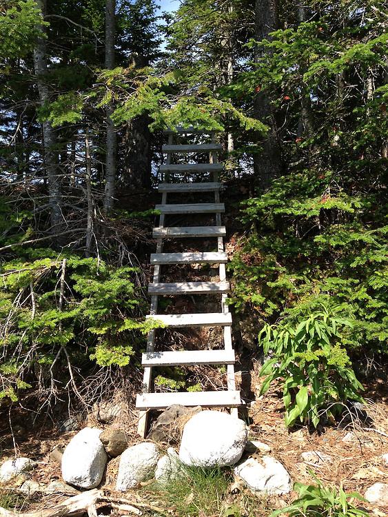 Ladder up to Upper Negro island, Castine, Maine, US