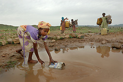 The daughter of Kadija, Saidya, 11, and her neighbors' children including Jima Ali (wearing purple) collect water with a donkey August 25, 2006 in Barentu, Eritrea. Some of the most difficult and labor intensive work is gathering wood and water and it is traditionally carried out by women only. (Ami Vitale)