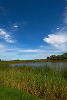 Midwest Summer Sky Panorama. Rest Area along Interstate 29 in South Dakota. Image 5 of 9 taken with a Nikon D3x and 24 mm f/1.4G lens (ISO 100, 24 mm, f/11, 1/800 sec).