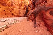 Bucksking Gulch slot canyon