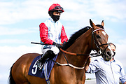 Captain Ryan ridden by Nicola Currie and trained by Geoffrey Deacon - Mandatory by-line: Robbie Stephenson/JMP - 18/07/2020 - HORSE RACING- Bath Racecourse - Bath, England - Bath Races 18/07/20