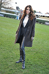 TASHA DE VASCONCELOS MOTA E CUNHA at the 2012 Hennessy Gold Cup at Newbury Racecourse, Berkshire on 1st December 2012
