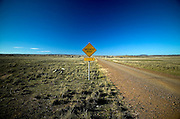 Stock Crossing, Southern Highlands, NSW, Australia