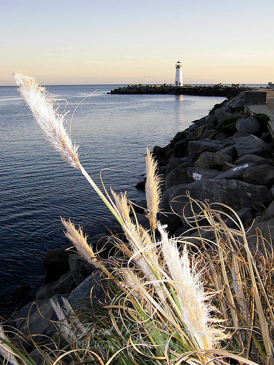 Santa Cruz Harbor ~ Walton Lighthouse ~ 3141